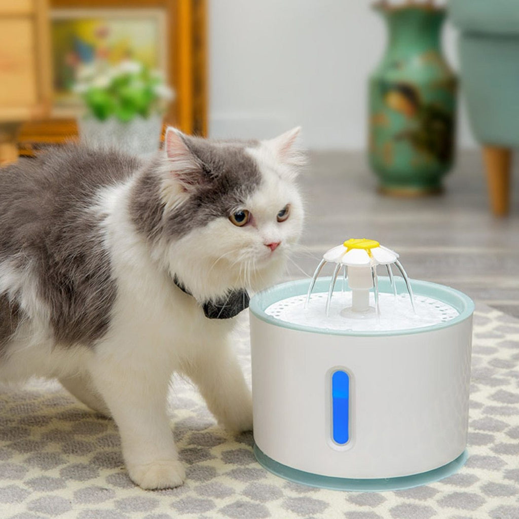 DoBark - LED Pet Water Fountain - DoBark