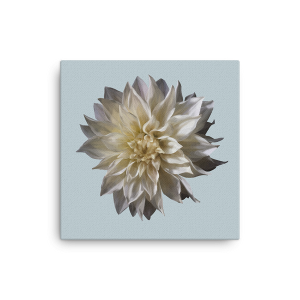 Dahlia - Chalk Grey Canvas-Tiny Potager-12×12-Tiny Potager
