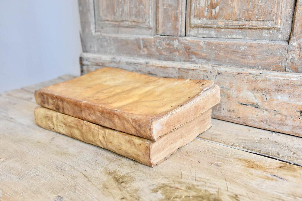 Set of 2 Large Antique Vellum Books