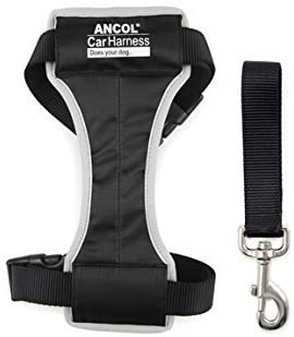 Ancol Travel & Exercise Harness (various sizes)