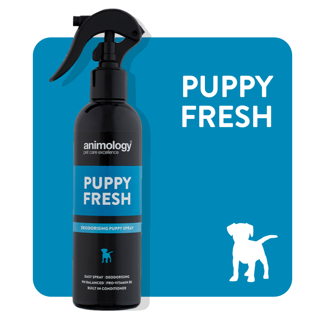 Animology 'Puppy Fresh' Refreshing Spray 250ml