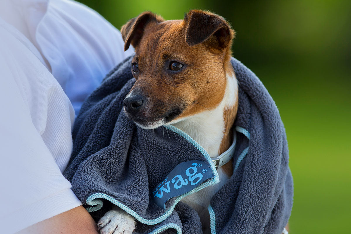 Henry Wag Microfibre Towel Small