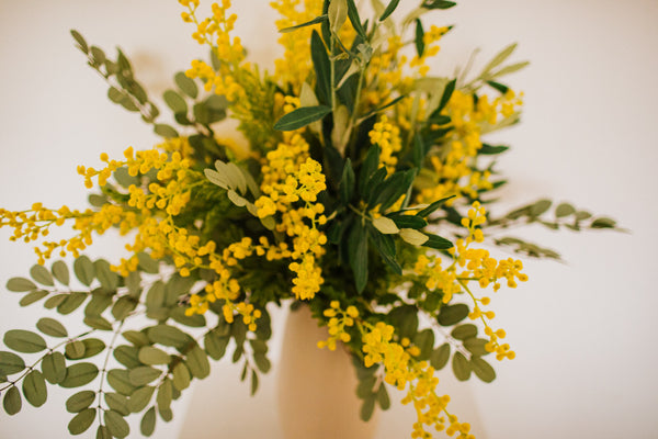 Realistic artificial arrangement of Mimosa, Olive branches and soft grey Robinia foliage in an chic off white vase perfect for the home or to gift.