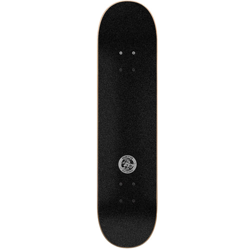 Darkstar Magic Carpet Complete Skateboard Gunsmoke 8.00""