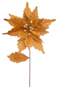 Gold velvet poinsettia