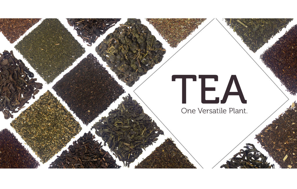Tea - One Versatile Tree