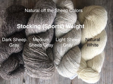 Load image into Gallery viewer, Bartlett Yarn - Stocking (Sports) Weight