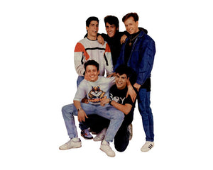 Laden Sie das Bild in den Galerie-Viewer, BRAVO STARSCHNITTE in Einzelteilen - Alle Starschnitte zum Download - 107 New Kids On The Block