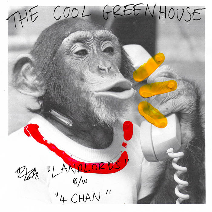 COOL GREENHOUSE- Landlords 7""