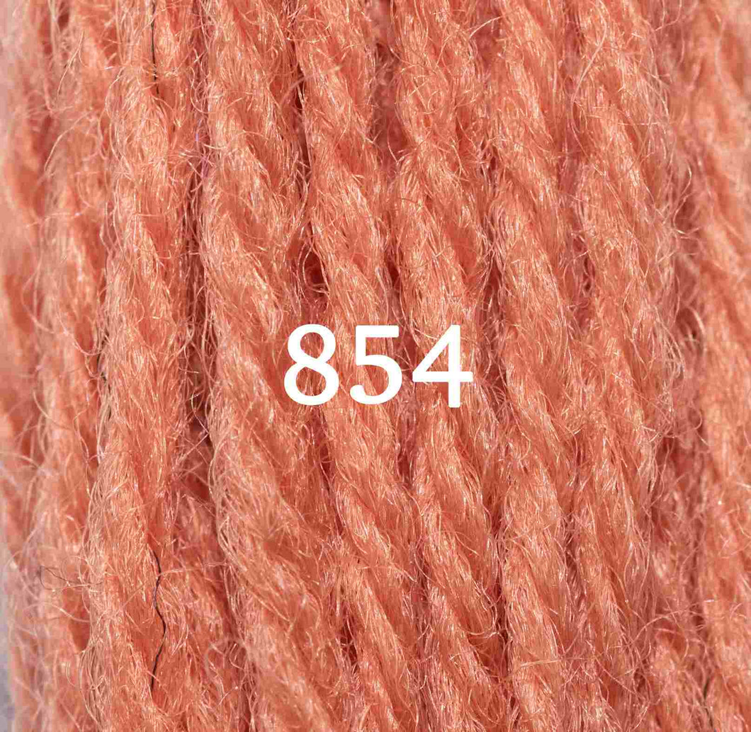 Appletons Tapestry Wool 10m Skein - Shade 854