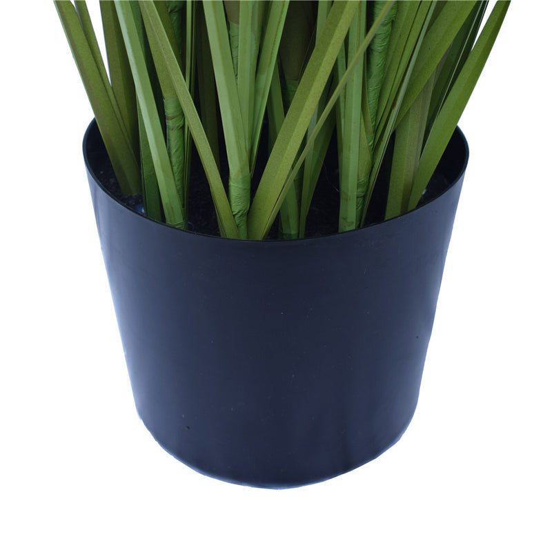 Spear Grass Plant 180cm - SaleNow | Amazing Sale Everyday