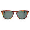 Pacifico Optical Blair - Whiskey Havana with Green Lens