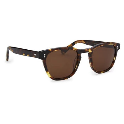 Pacifico Optical Yacht Master - Cola With Polarised Brown Lens