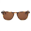 Pacifico Optical Blair - Cola with Polarised Brown Lens