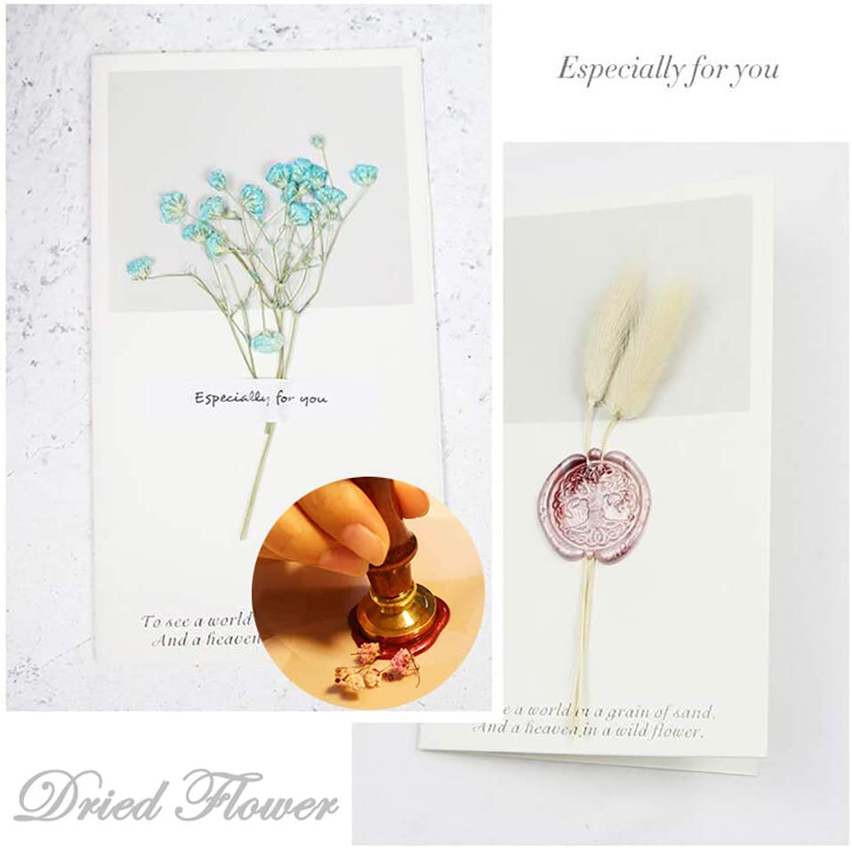 Paper Plane with House Forest Wax Seal Stamp