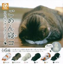 Load image into Gallery viewer, 70813 SLEEPING CAT CAPSULE-6 pieces
