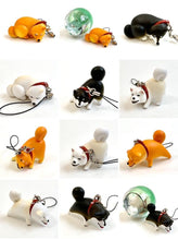 Load image into Gallery viewer, 70822 NAUGHTY SHIBA CAPSULE-5 pieces