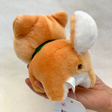 Load image into Gallery viewer, 63054 SHIBA INU PLUSH-6 assorted colors