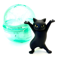 Load image into Gallery viewer, 708361 CAT PEN HOLDER CAPSULE-5