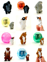 Load image into Gallery viewer, 708421 PEEING ANIMAL CAPSULE-5