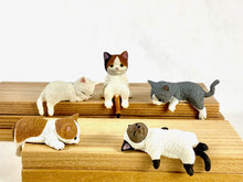 Load image into Gallery viewer, 70738 PLAYFUL HANGING CAT BLIND BOX-10 assorted