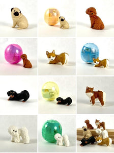 70829 TURNING DOG CAPSULE-6 pieces