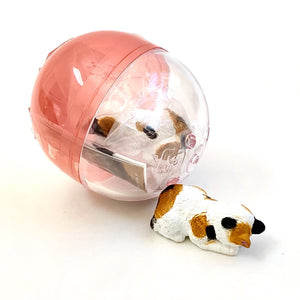 70813 SLEEPING CAT CAPSULE-6 pieces