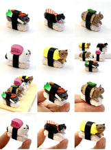 Load image into Gallery viewer, 707001 SUSHI CAT FIGURINES-1.75 INCH-5 assorted a set