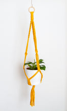 Load image into Gallery viewer, Mustard Macrame Plant Hanger