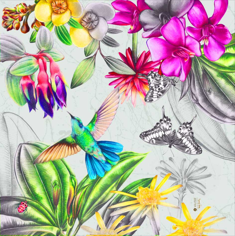 humming bird-butterfly-flowers