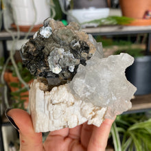Load image into Gallery viewer, Fluorite and Muscovite Specimen