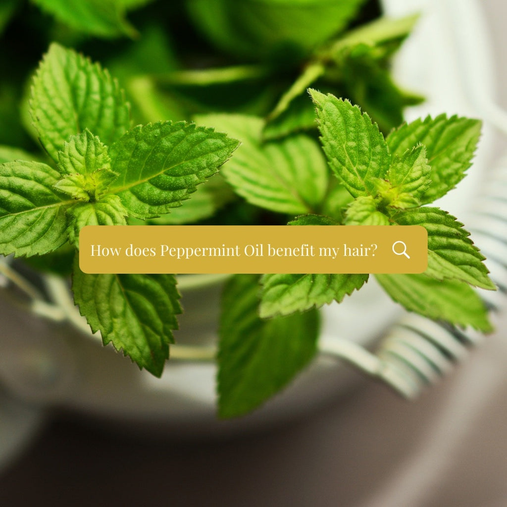 How peppermint oil increases hair growth