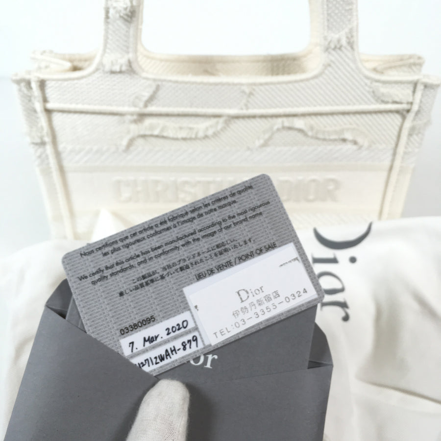 Dior Mini Book Tote