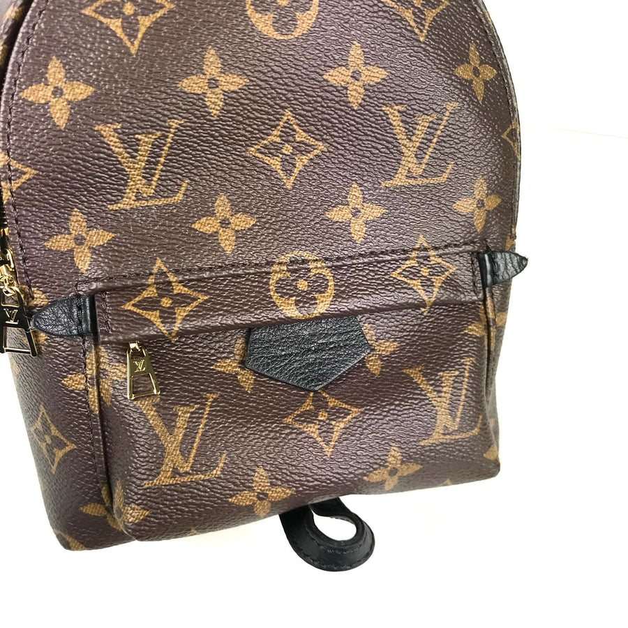 Louis Vuitton Palmsprings Backpack