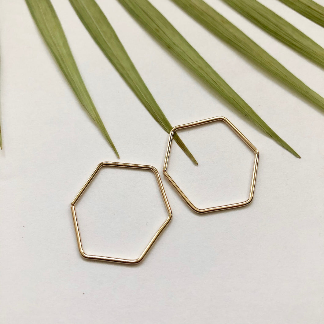 Hexagon Hoop Earrings - W5