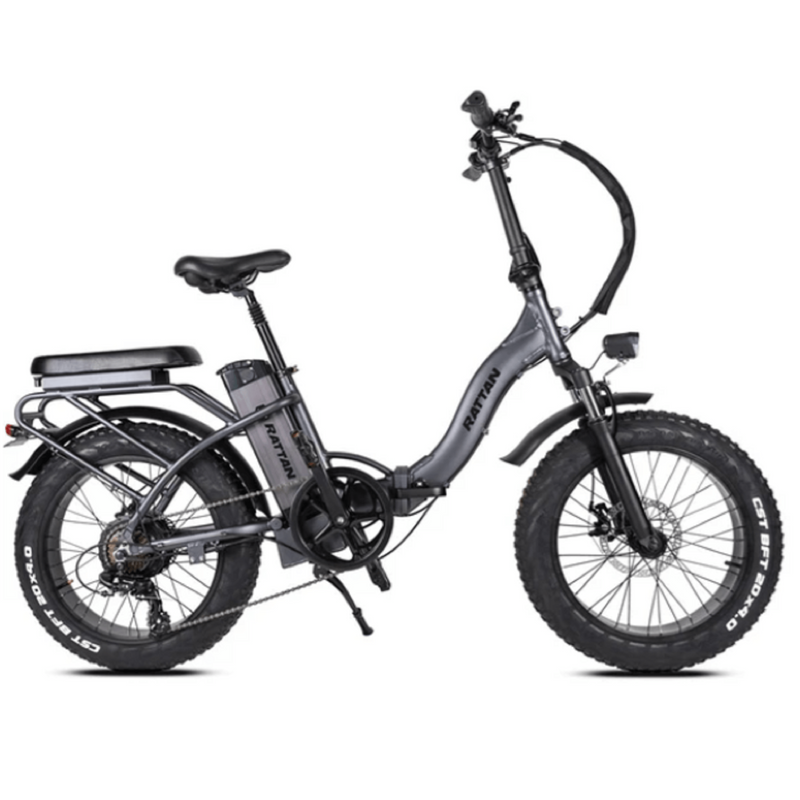 Electric Bike Rattan LF Greyish Purple