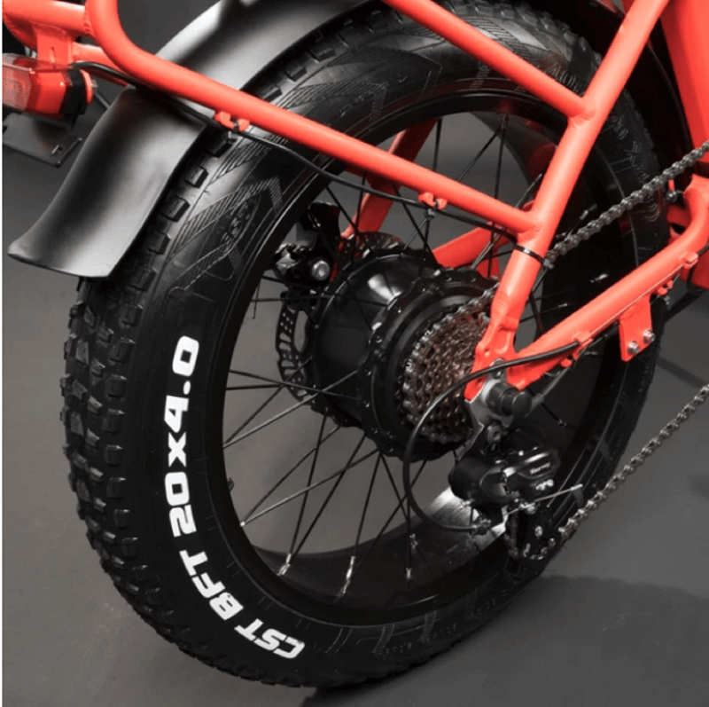 Electric Bike Rattan LF Tire