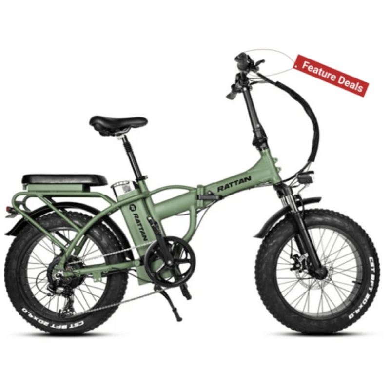 Rattan 750W LF Fat Tire Folding Electric Bike