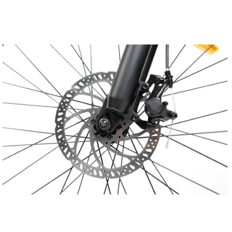 Electric Bike Rattan Pathfinder Brake