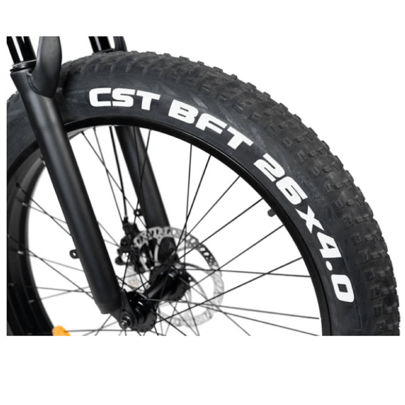 Electric Bike Rattan Pathfinder Tire