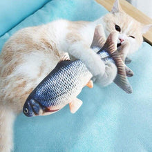 Load image into Gallery viewer, Catching Fish Cat Toy
