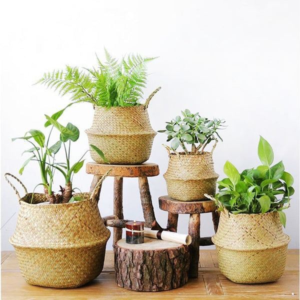 Household Foldable Natural Seaweed Woven Storage Garden Plant Pot S/M/L