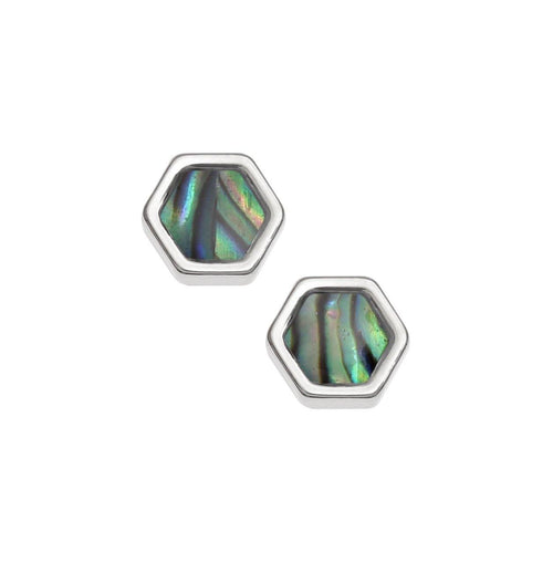 Paua Shell Honeycomb Stud Earrings