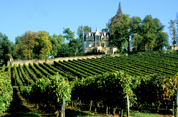 The wonderful world of Bordeaux wines
