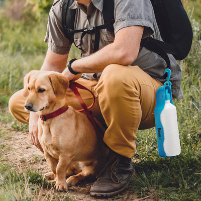 Dog Travel Water Bottle - BOSHEL STORE