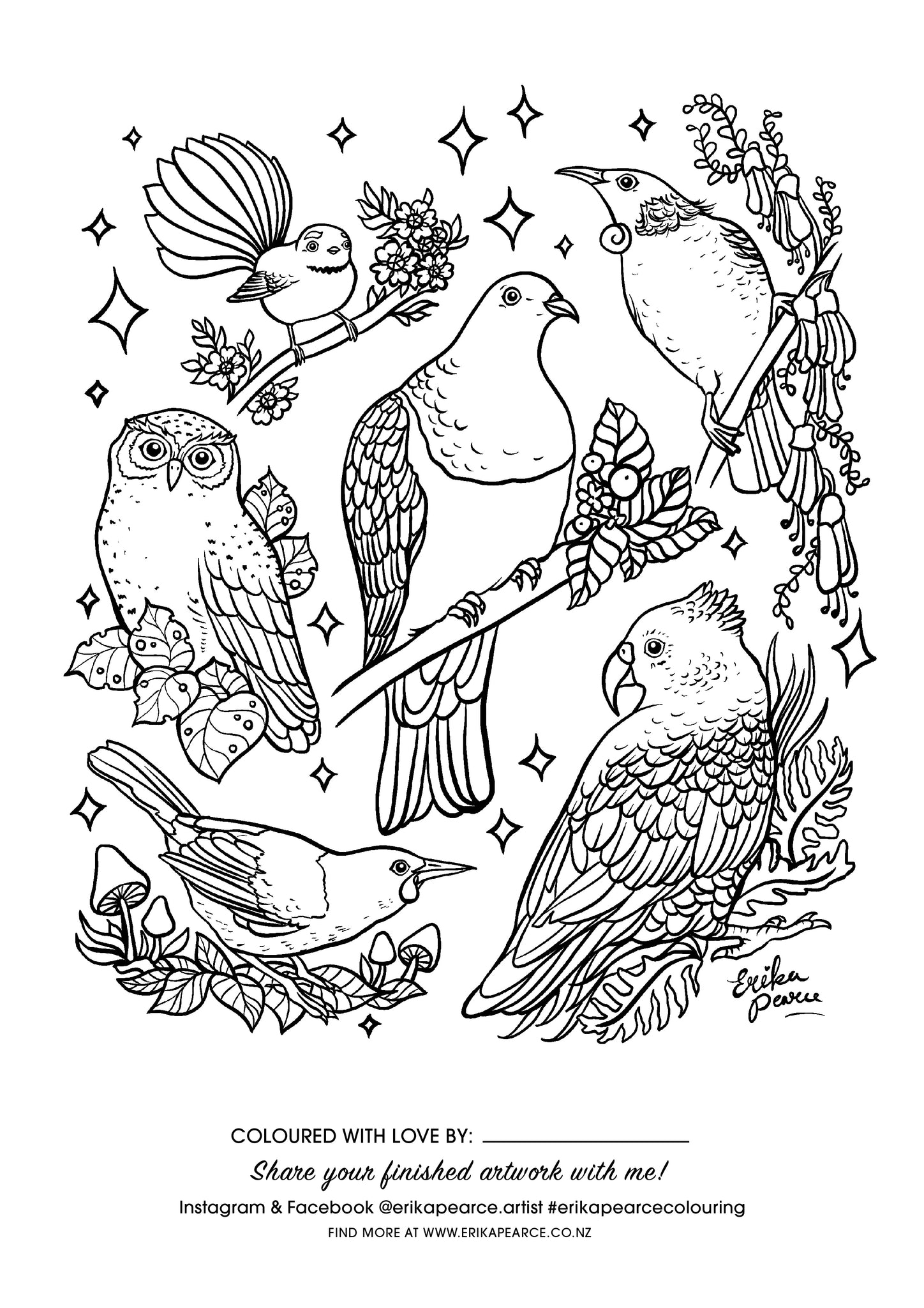 Erika Pearce Artist - FREE Colouring in pages - NZ Birds