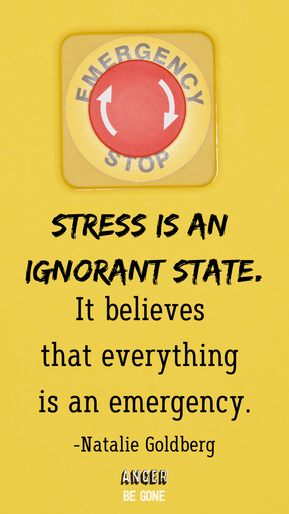 Stress is an ignorant state. It believes that everything is an emergency. -Natalie Goldberg