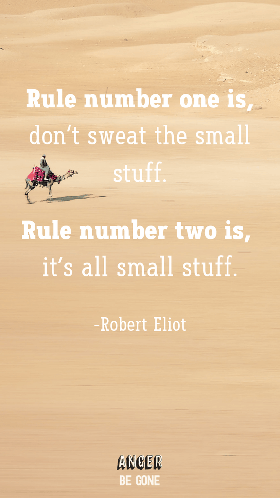 Rule number one is, don't sweat the small stuff. Rule number two is, it's all small stuff. -Robert Eliot