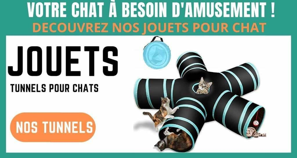 jouets tunnels pour chat