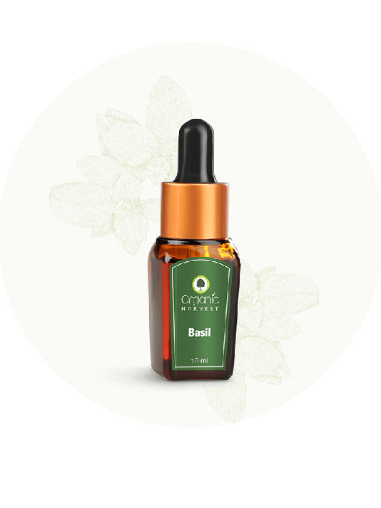 (Organic Harvest) Basil Essential Oil (10ml)
